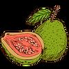 guava.png