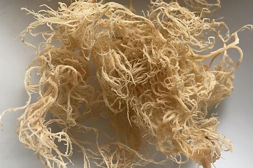Sea Moss (Dry)