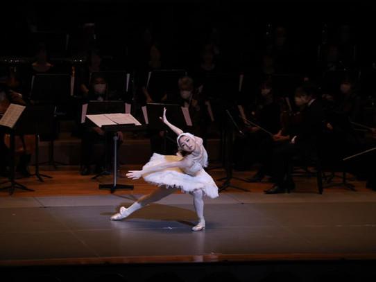 Dying Swan「瀕死の白鳥」New Year Concert 2021