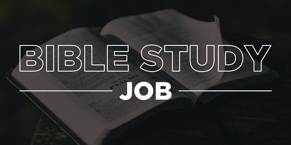 7-Week Bible Study on Job