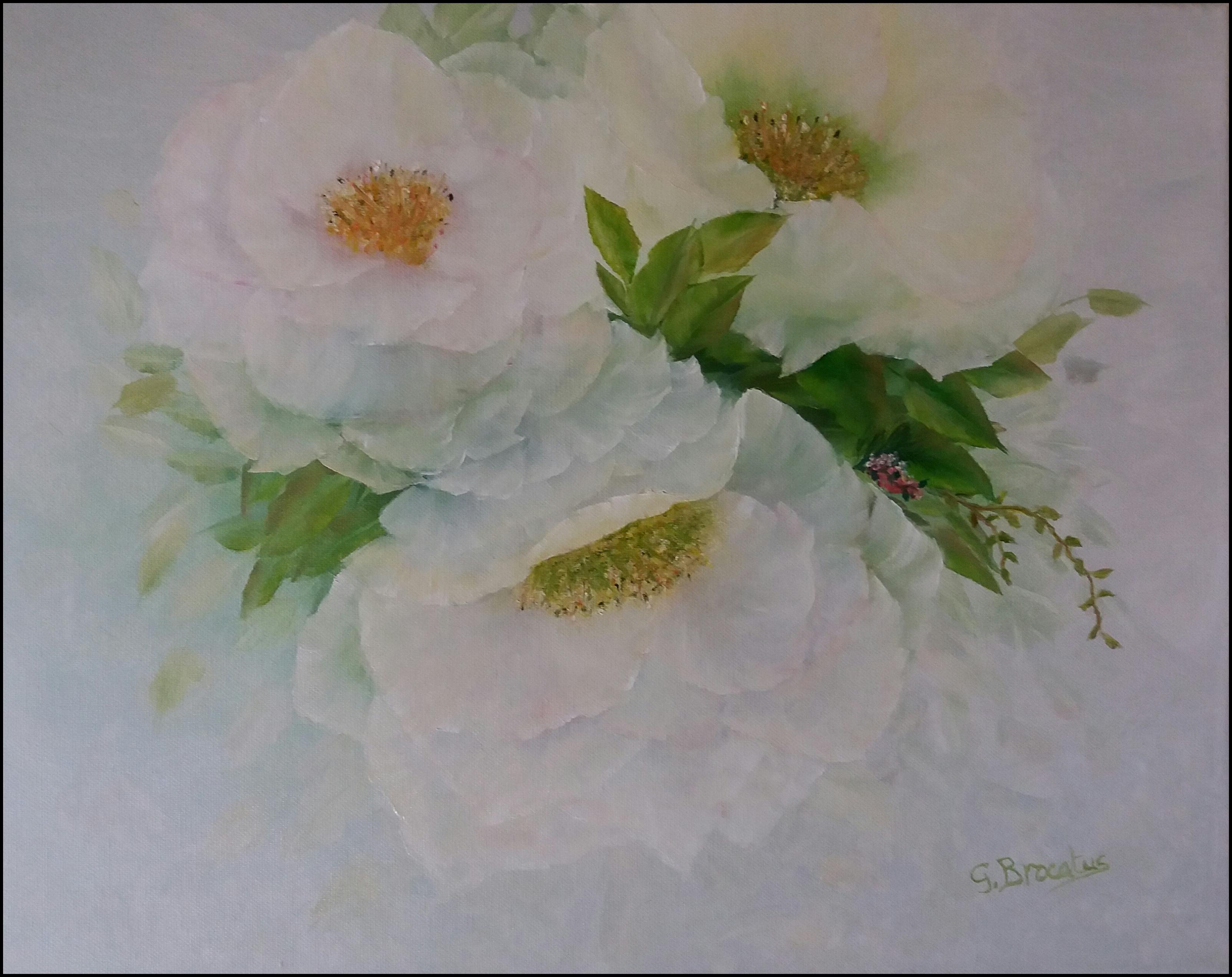Klassieke witte rozen