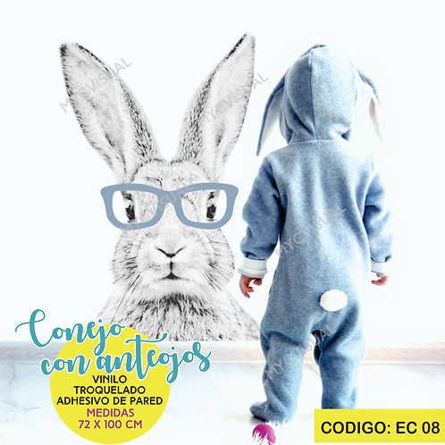 Vinilo Conejo Con Anteojos