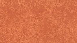 178-198 Apricot