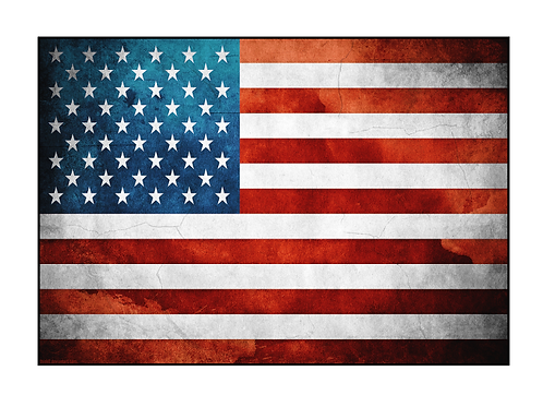 LoPro Polyflex 2D Polymer Patch ARTISITIC AMERICAN FLAG
