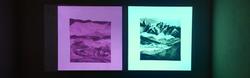 Lorna-Jones-Website-Slideshow-Image-2.png