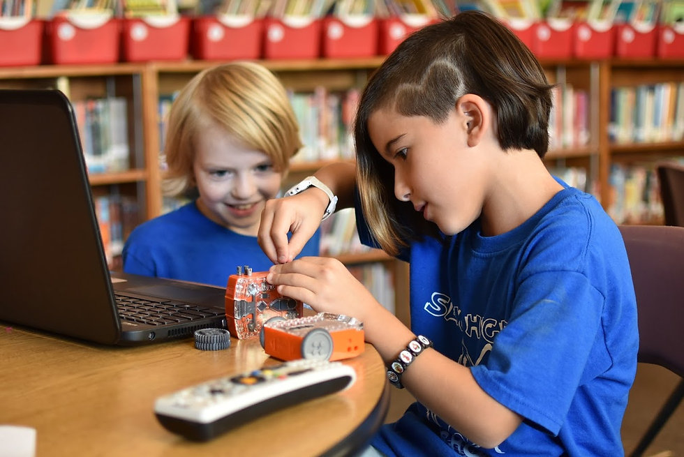 Two Students Working on Stem Project