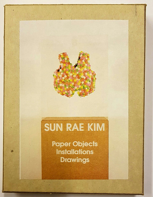 """""""Paper Objects, Installations, Drawings"""""""