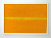 orange Felder, 2014