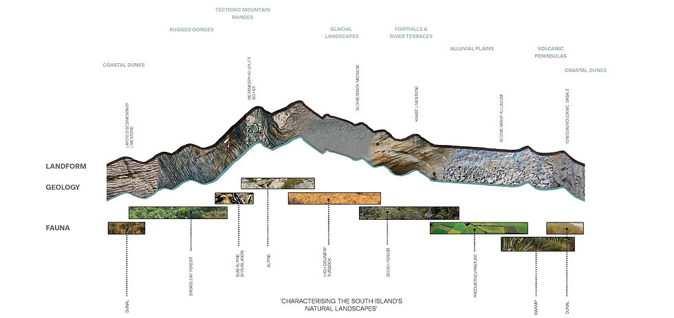 CIAL Russley Road Landscape Design Proje