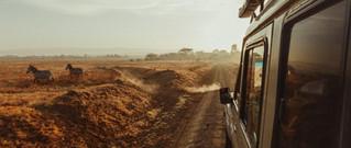 xKer-Downey-Africa.jpg.pagespeed.ic_.T1vFYymOyl.jpg