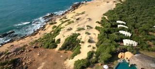 Wild_Coast-31.jpg
