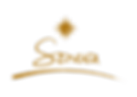 8156569_2_Soneva-logo.png