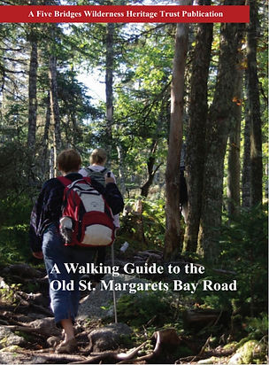 WalkingGuide-805x1365_edited.jpg