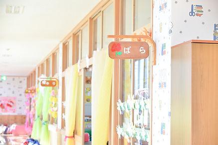 あかつき幼稚園 (268).jpg