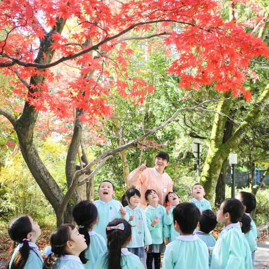 4-5紅葉・園庭.jpg