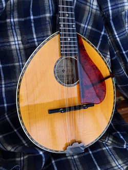Poe #74 - Red Spruce Top