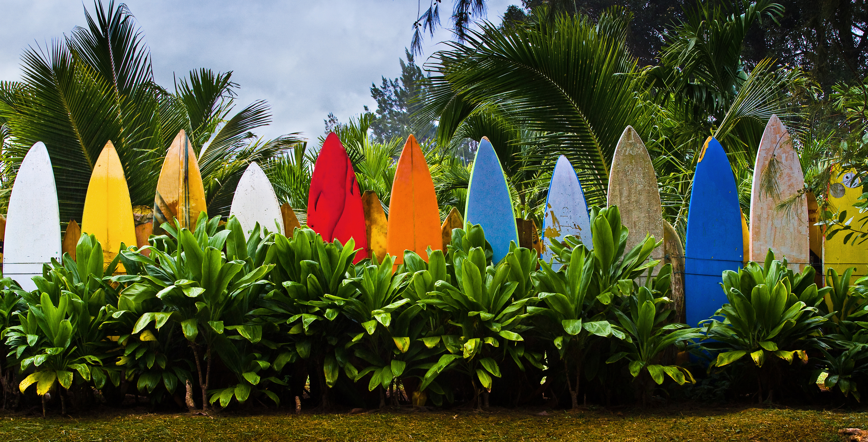 Where Surfboards Retire