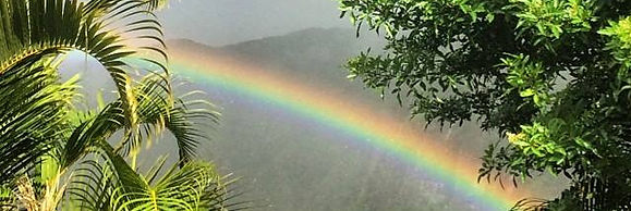tami rainbow 2.jpg