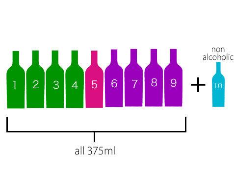 送料無料!1日1本!小瓶ワイン10日間セット