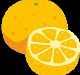 fruit_grapefruit2.png