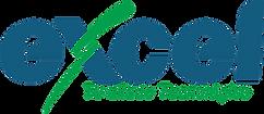 Excel logo-rnsp.png
