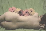 Flower Test Shoot