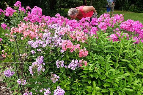 Garten von Uwe und Uta Kalauch.jpg