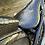 Thumbnail: Gator #00116