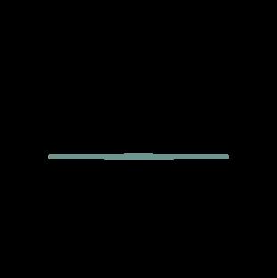 BVM Logo Final-01.png