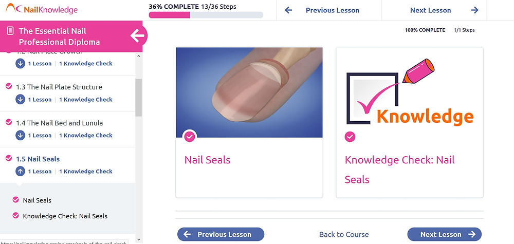 Screenshot inside the Nail Knowledge course.