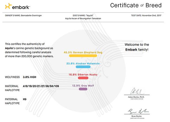 Aquila Embark Certificat.PNG