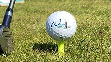 GolfbalWaseGolf.jpg
