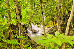 Property for sale in Belize