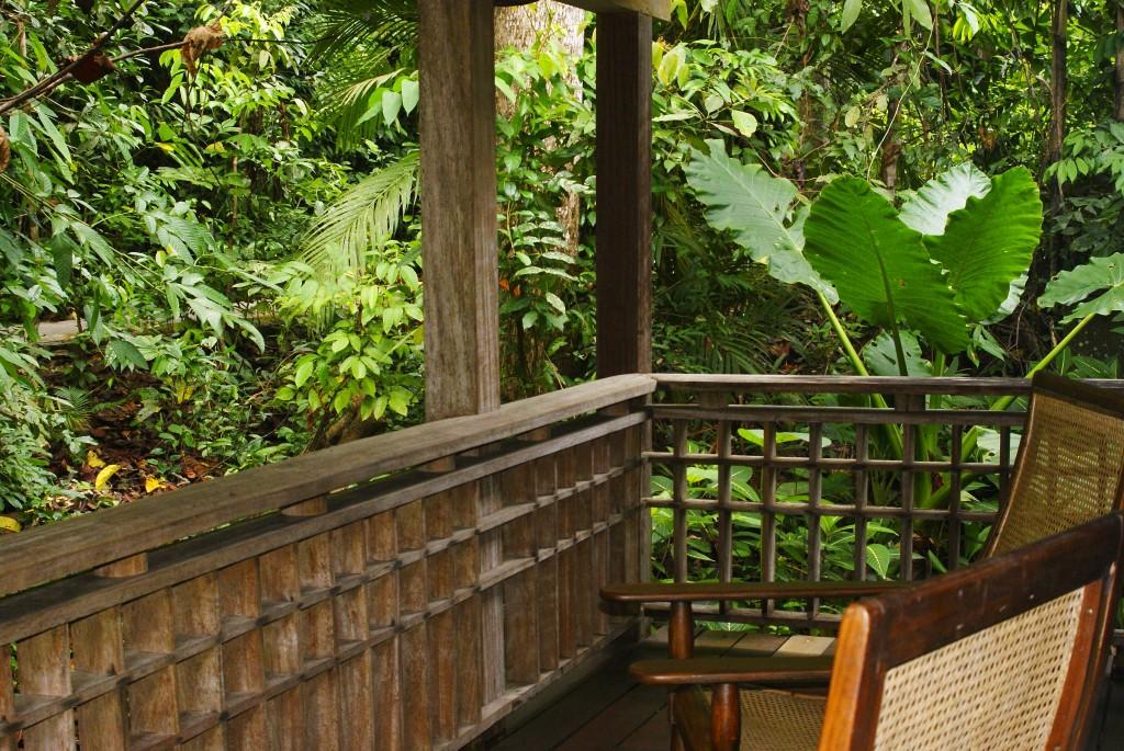 jungle-porch-1024x685