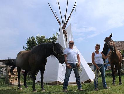 Natural farm luogo olistico energeticamente pulito nel verde di Carmagnola un villaggio indiano con un ricovero per cavalli