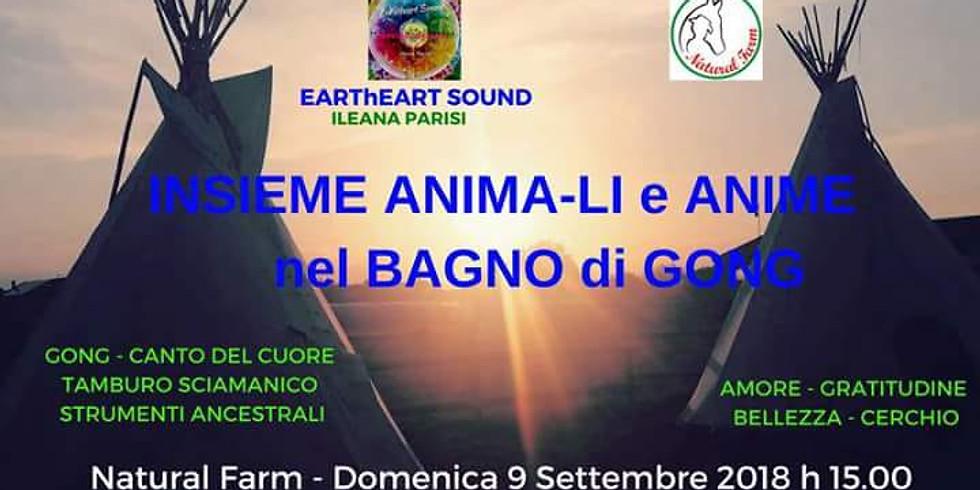 INSIEME ANIMA-LI E ANIME NEL BAGNO SONORO DI GONG
