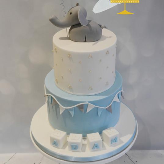 125._Elephant_christening[1].jpg