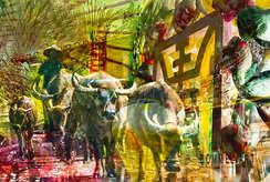 Memorie Vietnam, Copyright Bommel-Art, Belinde van Bommel fotografie, fotograaf Uden