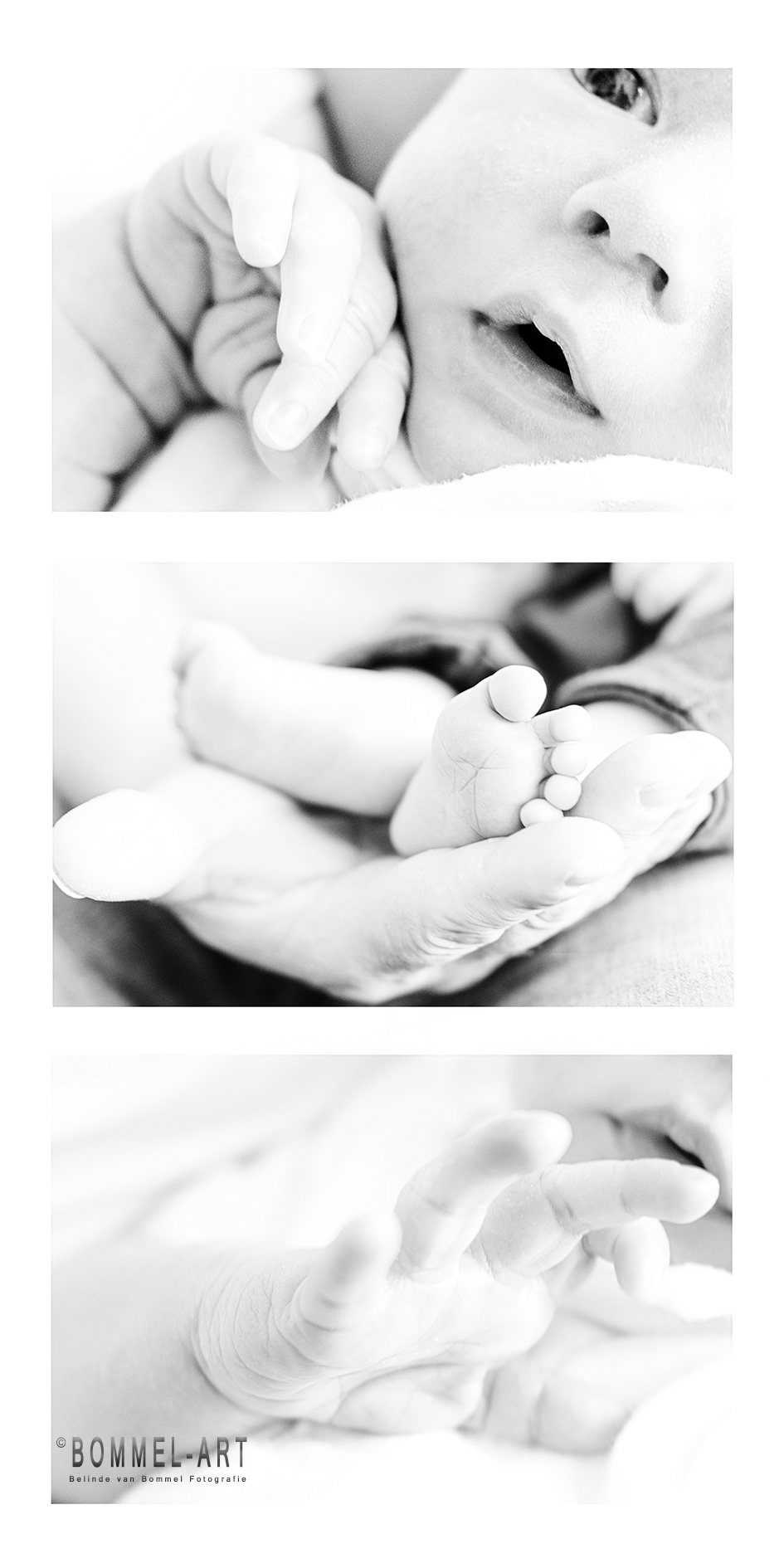 Newborn Dave