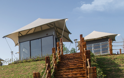 茶园帐篷酒店