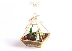 Mini Oasis workshop