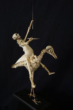 Sabrina-Grusse-ou-sont-passés-les-oiseau
