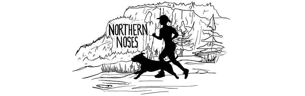 northern noses logo stretch bg.jpg