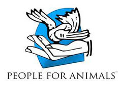 People For Animal