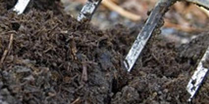 PLANT NUTRITION & SOIL AMENDMENTS FOR NATURAL GARDENERS