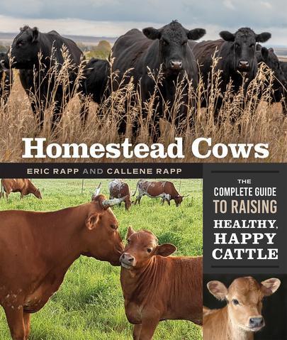 Homestead Cows.jpg