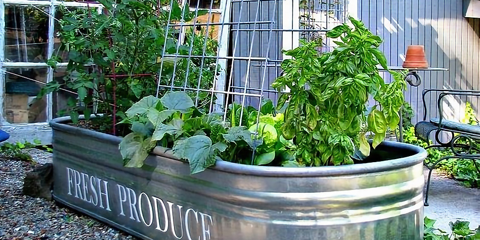 CONTAINER GARDENING for Small Space Growing - LIVE WEBINAR