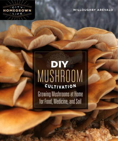 DIY Mushroom.jpg