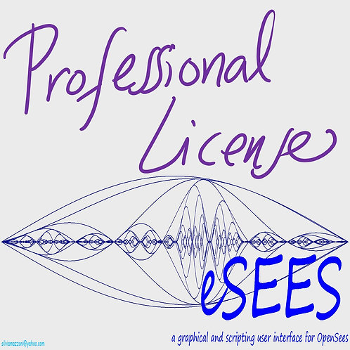 eSEES pro -- a graphical and Scripting Interface for OpenSees