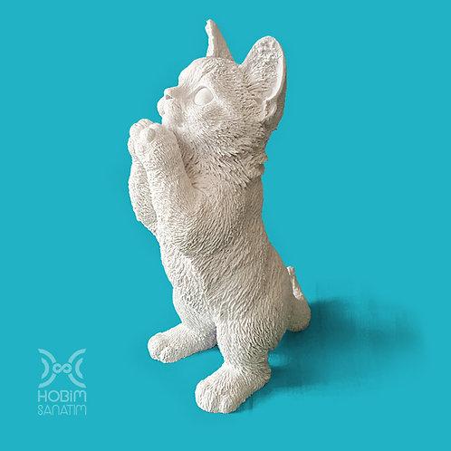 Sevimli Kedi Ayakta Polyester